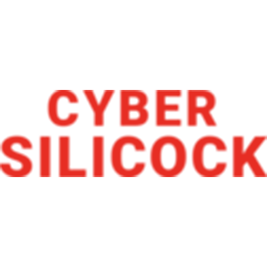 Cyber Silicock
